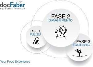 le-tre-fasi-docfaber-equilibrio